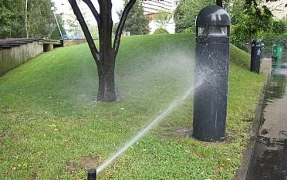 Economiser l'eau dans le jardin