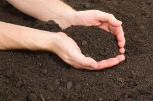 améliorer son sol