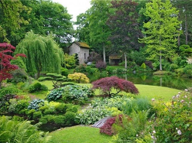 Comment faire un massif d 39 arbustes arbuste pour massif for Quel arbre pour mon jardin
