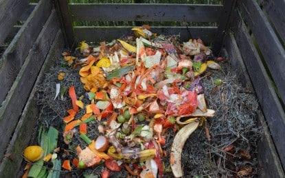 Le compostage, pilier du jardinage écologique