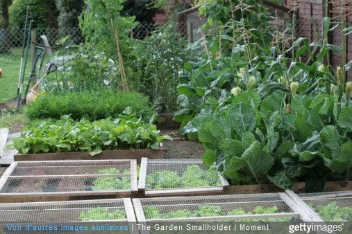 calcaire au jardin comment diminuer le calcaire dans votre jardin le jardinier. Black Bedroom Furniture Sets. Home Design Ideas