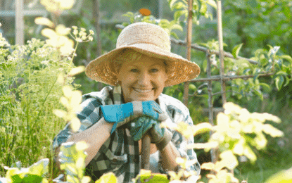 Conseils : comment cultiver des légumes sous serre ?