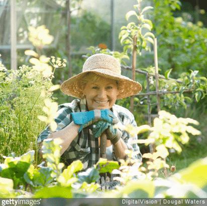 Nos conseils pour une belle récolte de légumes toute l'année sous votre serre de jardin.