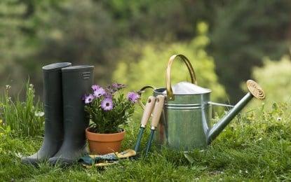 De quoi a-t-on besoin pour se mettre au jardinage?