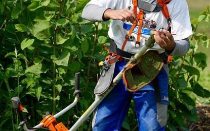 Comment choisir un broyeur de végétaux performant ?