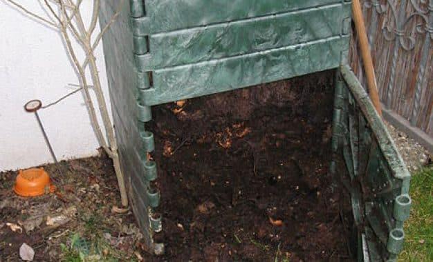 Le lombricompostage : apprivoisez des vers pour embellir votre jardin