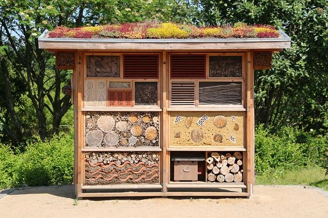 comment faire un h tel insectes comment construire une maison insectes. Black Bedroom Furniture Sets. Home Design Ideas