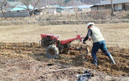 Motoculteur ou motobineuse : quel outil pour préparer la terre ?