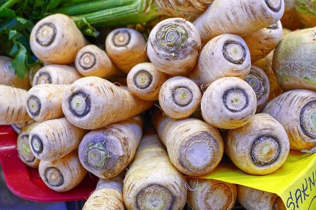 Culture du panais comment planter et r colter du panais - Comment cuisiner du panais ...