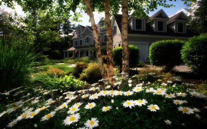 Délimiter les espaces de son jardin