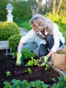 Femme en train de jardiner dans son potager