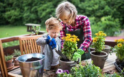 Comment nettoyer son jardin pour le printemps ?